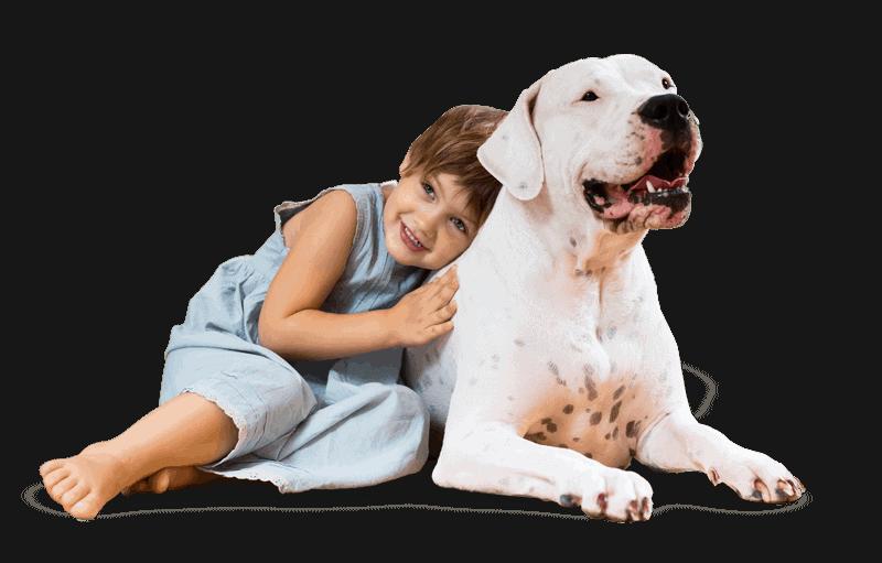 Få en god familiehund